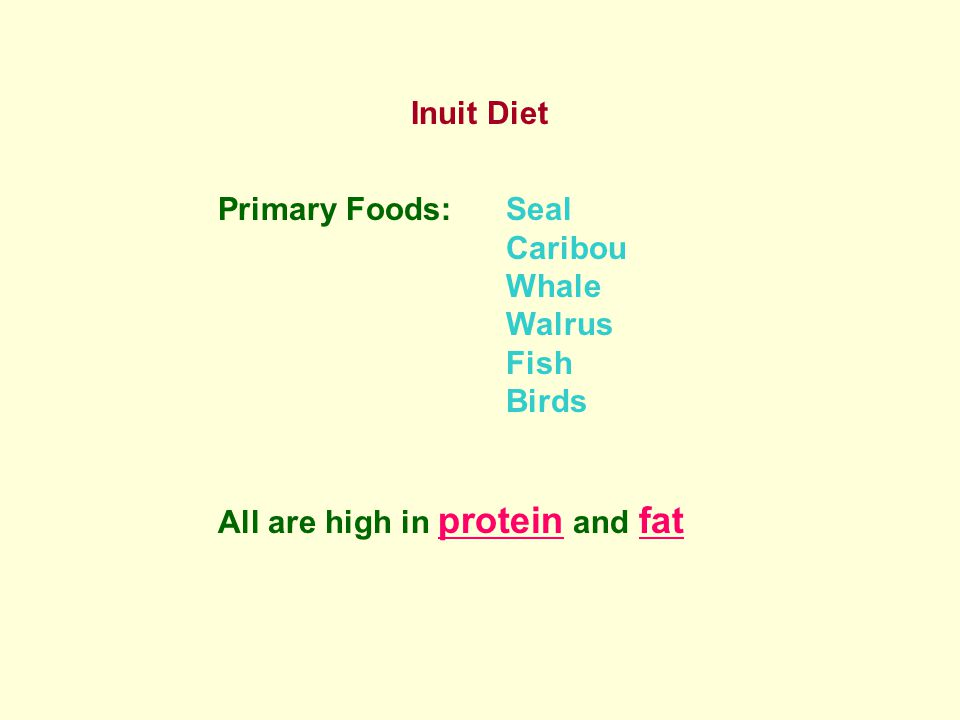 Inuit Diet Primary Foods:Seal Caribou Whale Walrus Fish Birds All are high in protein and fat