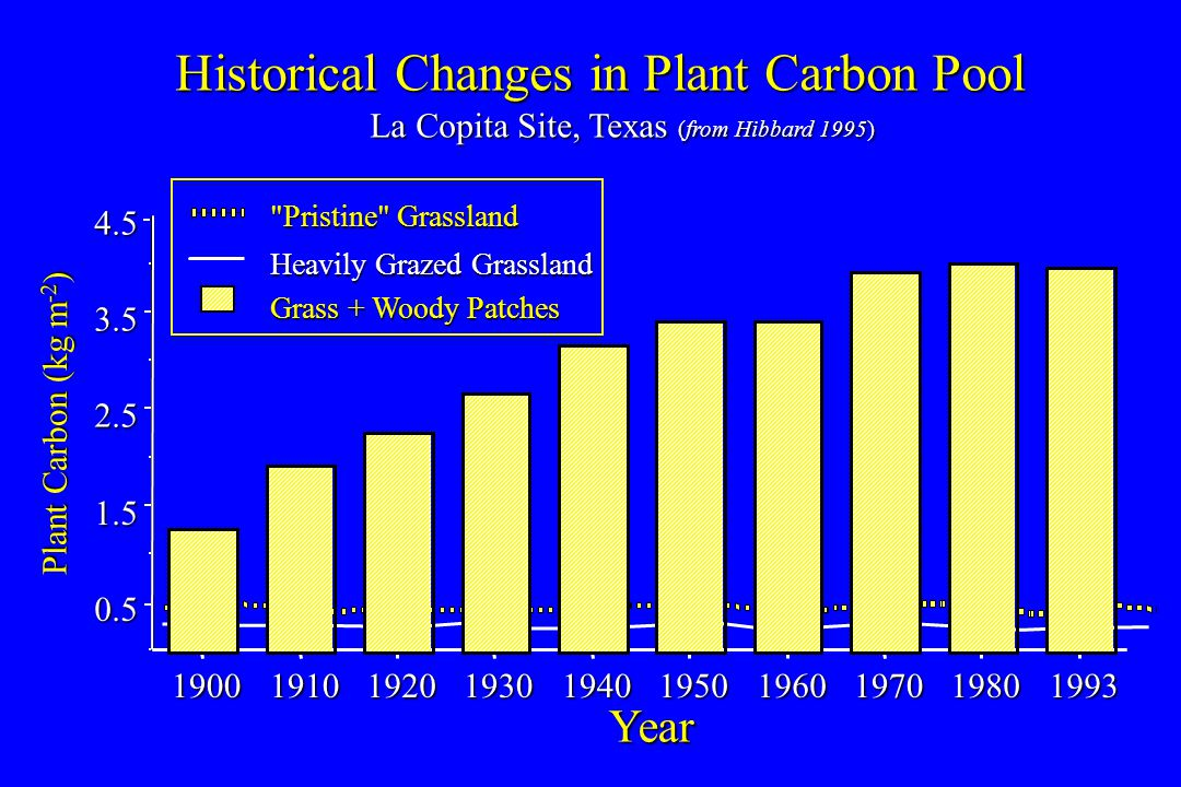 0.5 1.5 2.5 3.5 4.5 1900191019201930194019501960197019801993 Year Plant Carbon (kg m -2 ) Historical Changes in Plant Carbon Pool La Copita Site, Texas (from Hibbard 1995) La Copita Site, Texas (from Hibbard 1995) Grass + Woody Patches Pristine Grassland Heavily Grazed Grassland