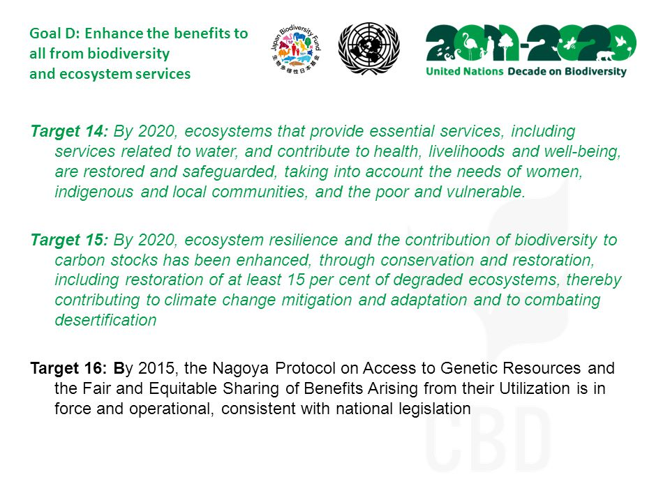 Goal D: Enhance the benefits to all from biodiversity and ecosystem services Target 14: By 2020, ecosystems that provide essential services, including services related to water, and contribute to health, livelihoods and well-being, are restored and safeguarded, taking into account the needs of women, indigenous and local communities, and the poor and vulnerable.