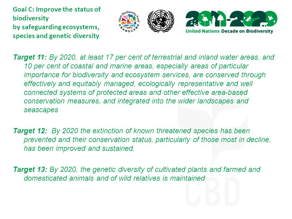 Goal C: Improve the status of biodiversity by safeguarding ecosystems, species and genetic diversity Target 11: By 2020, at least 17 per cent of terrestrial and inland water areas, and 10 per cent of coastal and marine areas, especially areas of particular importance for biodiversity and ecosystem services, are conserved through effectively and equitably managed, ecologically representative and well connected systems of protected areas and other effective area-based conservation measures, and integrated into the wider landscapes and seascapes Target 12: By 2020 the extinction of known threatened species has been prevented and their conservation status, particularly of those most in decline, has been improved and sustained.