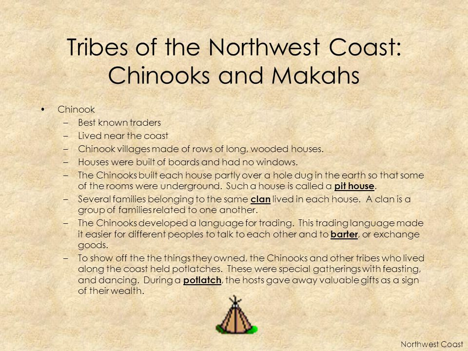 Tribes of the Northwest Coast: Chinooks and Makahs Chinook –Best known traders –Lived near the coast –Chinook villages made of rows of long, wooded houses.
