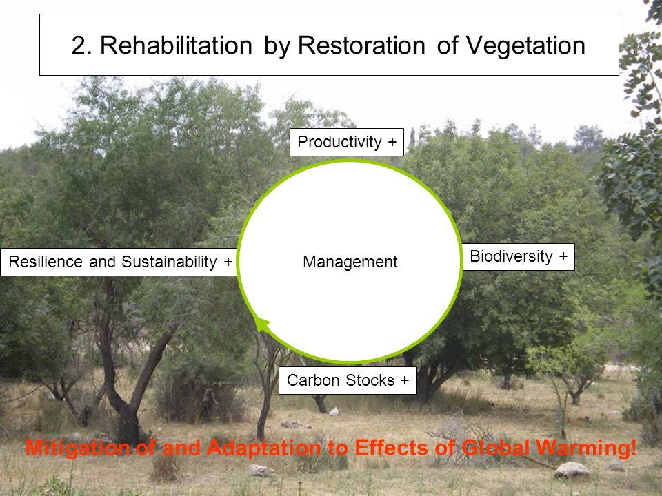 2. Rehabilitation by Restoration of Vegetation Productivity + Carbon Stocks + Biodiversity + Resilience and Sustainability + Management Mitigation of