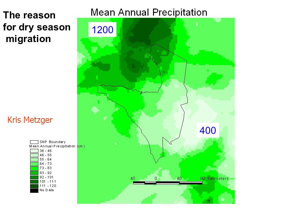 Kris Metzger The reason for dry season migration 1200 400