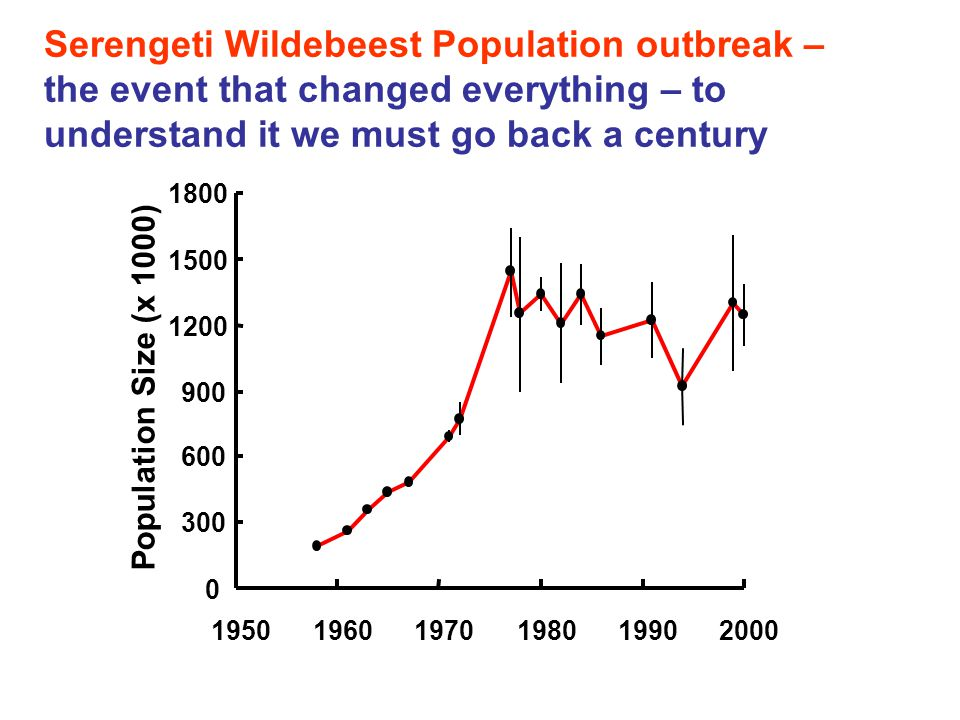 Serengeti Wildebeest Population outbreak – the event that changed everything – to understand it we must go back a century 0 300 600 900 1200 1500 1800 195019601970198019902000 Population Size (x 1000)