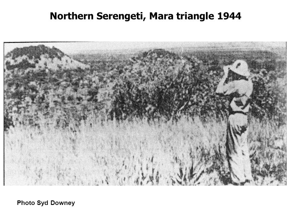 Northern Serengeti, Mara triangle 1944 Photo Syd Downey
