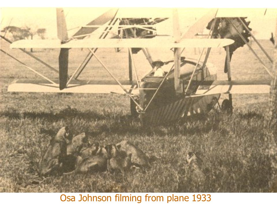 Osa Johnson filming from plane 1933