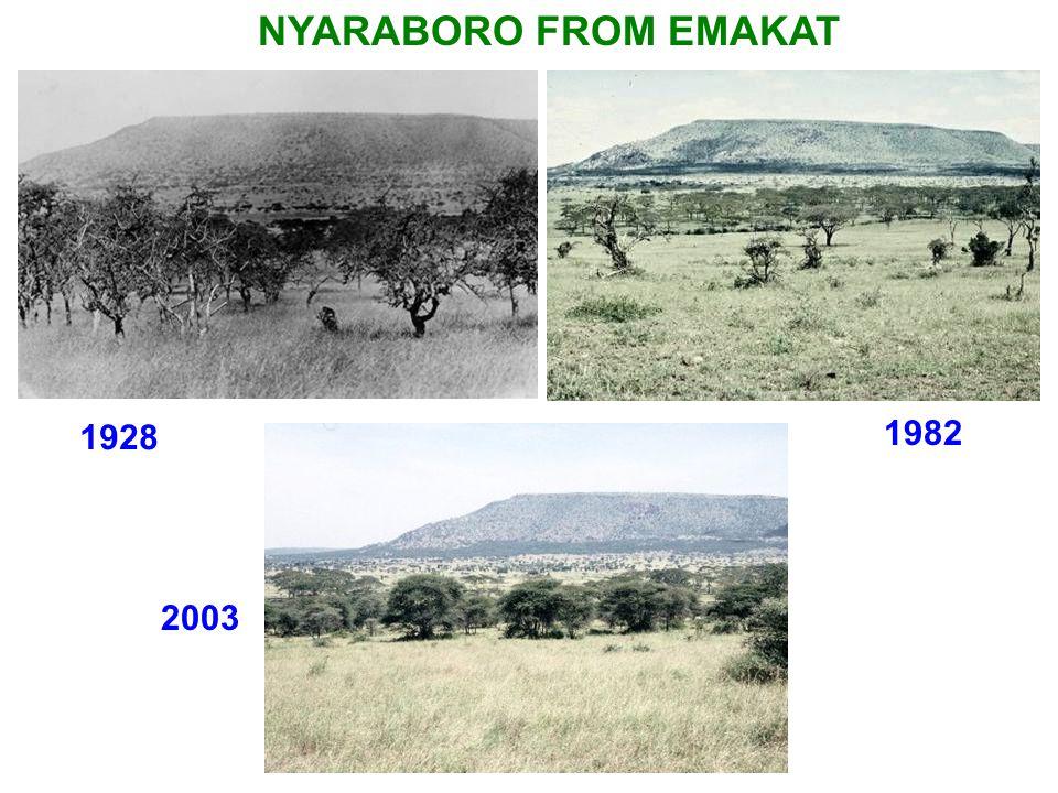 NYARABORO FROM EMAKAT 1928 1982 2003