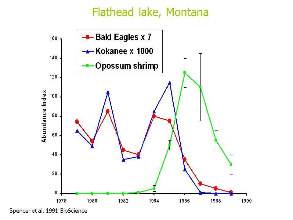 Flathead lake, Montana Spencer et al. 1991 BioScience