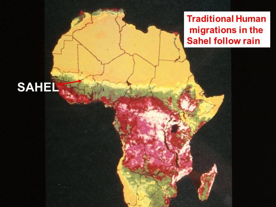 SAHEL Traditional Human migrations in the Sahel follow rain