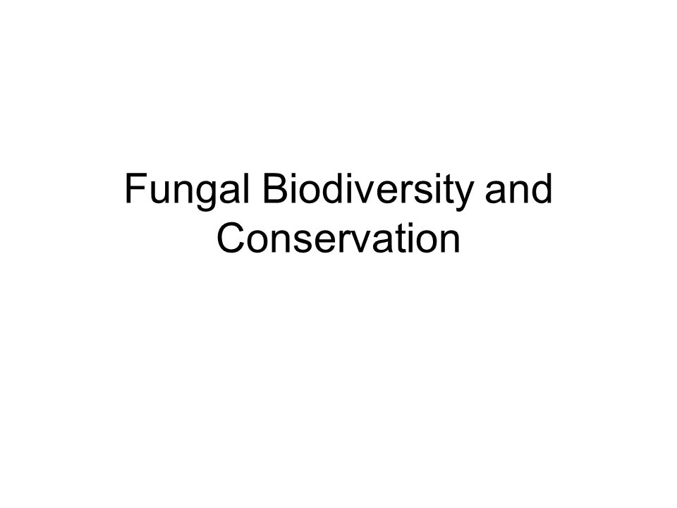 Diversity of fungi in Ireland- Sources Catalogue of Irish Fungi (Muskett and Malone 1978; 1980) British Mycological Society's Checklist of Basidiomycetes for Britain and Ireland (Legon andHenrici 2005); Fungal Records Database of Britain and Ireland (FRDBI) (British Mycological Society 2009) http://www.fieldmycology.net/http://www.fieldmycology.net/ Database of the Northern Ireland Fungus Group (NIFG 2009); Fungal records database in the National Biodiversity Data Centre (National Biodiversity Data Centre 2008); Published records from journals such as Irish Naturalists' Journal, Field Mycology and Proceedings of the Royal Irish Academy.