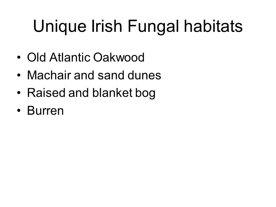 Unique Irish Fungal habitats Old Atlantic Oakwood Machair and sand dunes Raised and blanket bog Burren