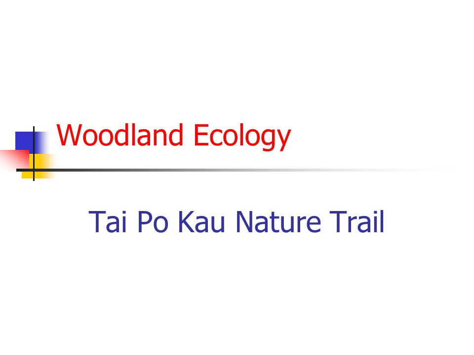Introduction The Tai Po Kau Nature Trail leads through a woodland and introduces some aspects of woodland ecology.