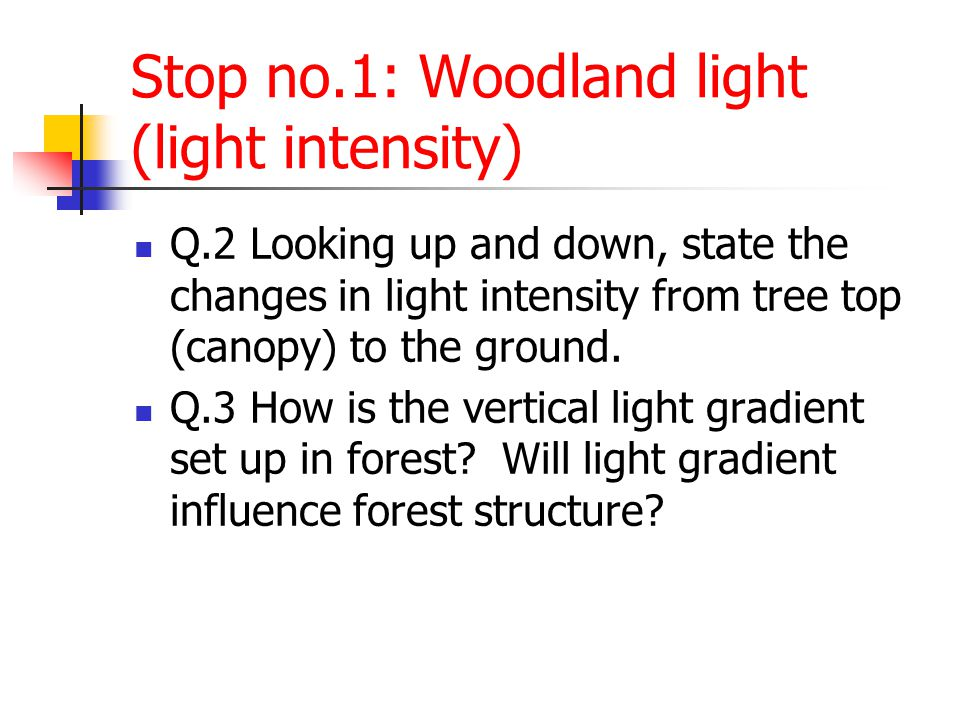 Stop no.2: Rainfall and stem flow Q.4 If it rains while you are in a forest, will you experience the full force of the rain.