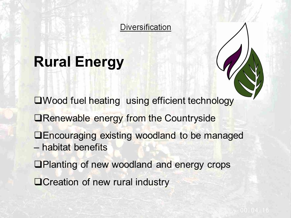 Diversification Rural Energy  Wood fuel heating using efficient technology  Renewable energy from the Countryside  Encouraging existing woodland to be managed – habitat benefits  Planting of new woodland and energy crops  Creation of new rural industry