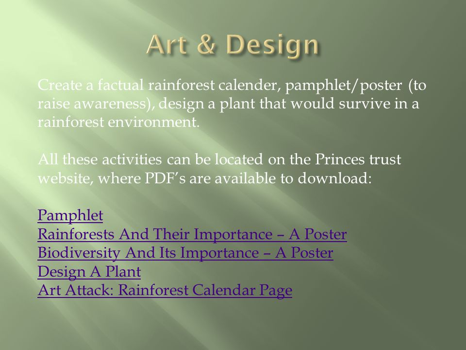 Create a factual rainforest calender, pamphlet/poster (to raise awareness), design a plant that would survive in a rainforest environment.