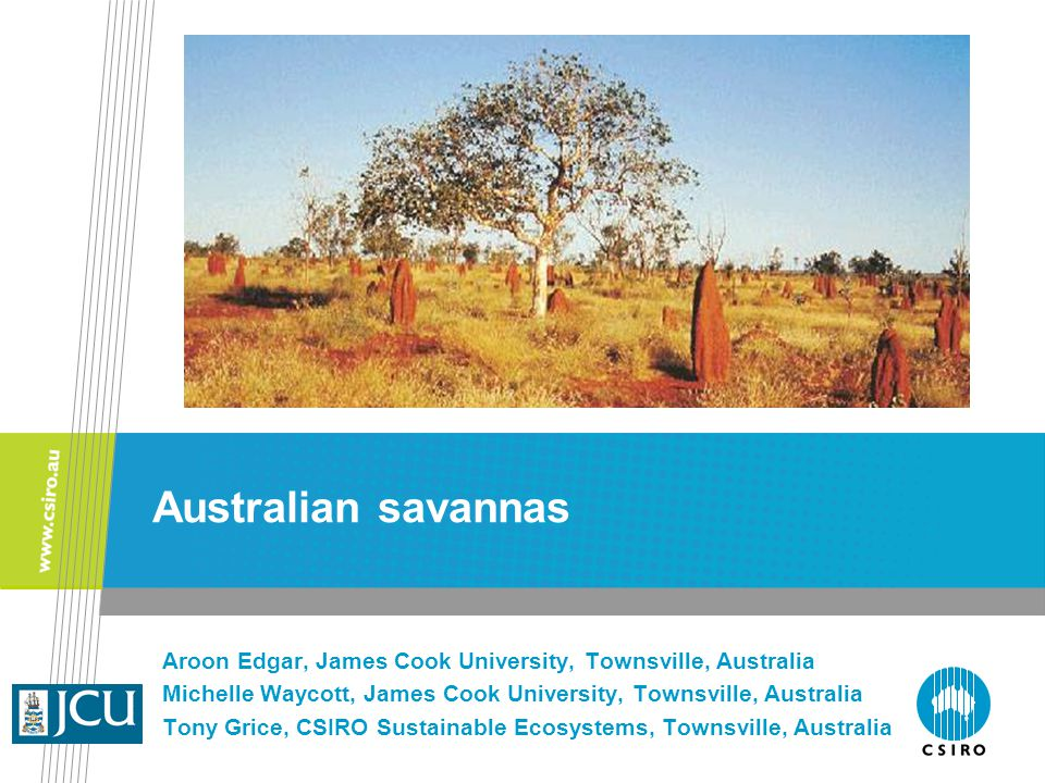 Aroon Edgar, James Cook University, Townsville, Australia Michelle Waycott, James Cook University, Townsville, Australia Tony Grice, CSIRO Sustainable Ecosystems, Townsville, Australia Australian savannas