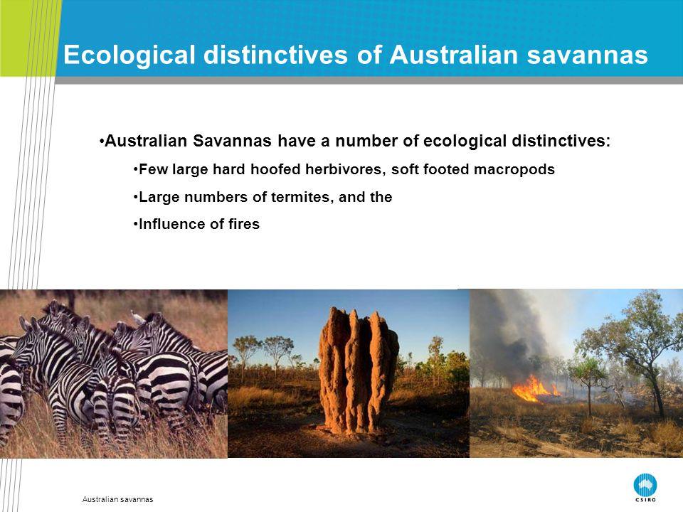 Australian savannas Ecological distinctives of Australian savannas Australian Savannas have a number of ecological distinctives: Few large hard hoofed