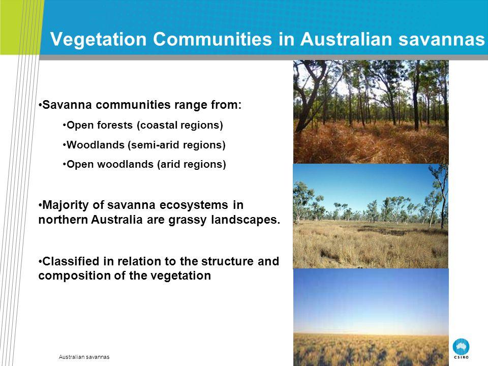 Australian savannas Vegetation Communities in Australian savannas Savanna communities range from: Open forests (coastal regions) Woodlands (semi-arid