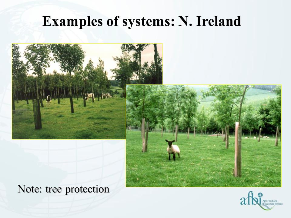 Examples of systems: N. Ireland Note: tree protection