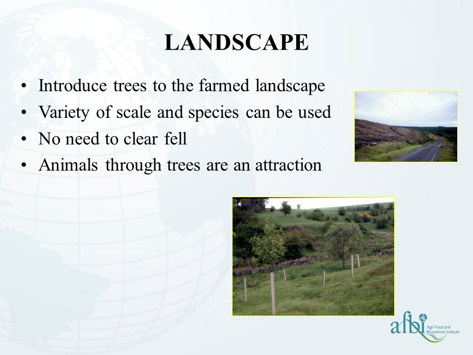 Introduce trees to the farmed landscape Variety of scale and species can be used No need to clear fell Animals through trees are an attraction LANDSCAPE