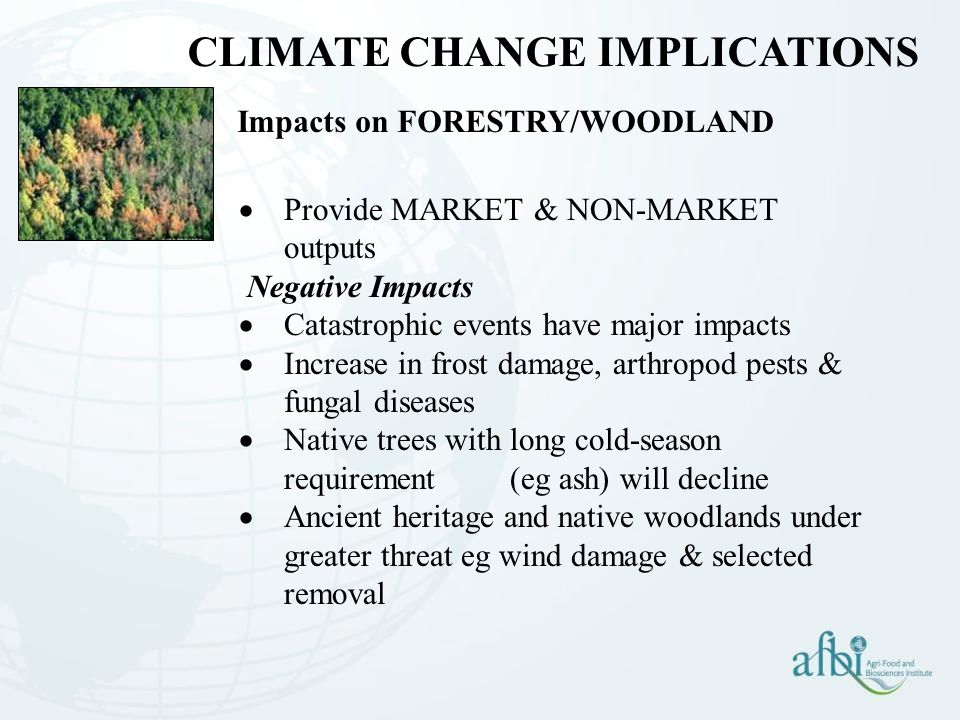 Impacts on FORESTRY/WOODLAND  Provide MARKET & NON-MARKET outputs Negative Impacts  Catastrophic events have major impacts  Increase in frost damage, arthropod pests & fungal diseases  Native trees with long cold-season requirement (eg ash) will decline  Ancient heritage and native woodlands under greater threat eg wind damage & selected removal CLIMATE CHANGE IMPLICATIONS