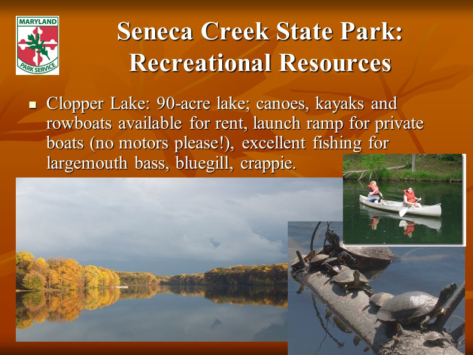 Seneca Creek State Park: Recreational Resources Clopper Lake: 90-acre lake; canoes, kayaks and rowboats available for rent, launch ramp for private boats (no motors please!), excellent fishing for largemouth bass, bluegill, crappie.