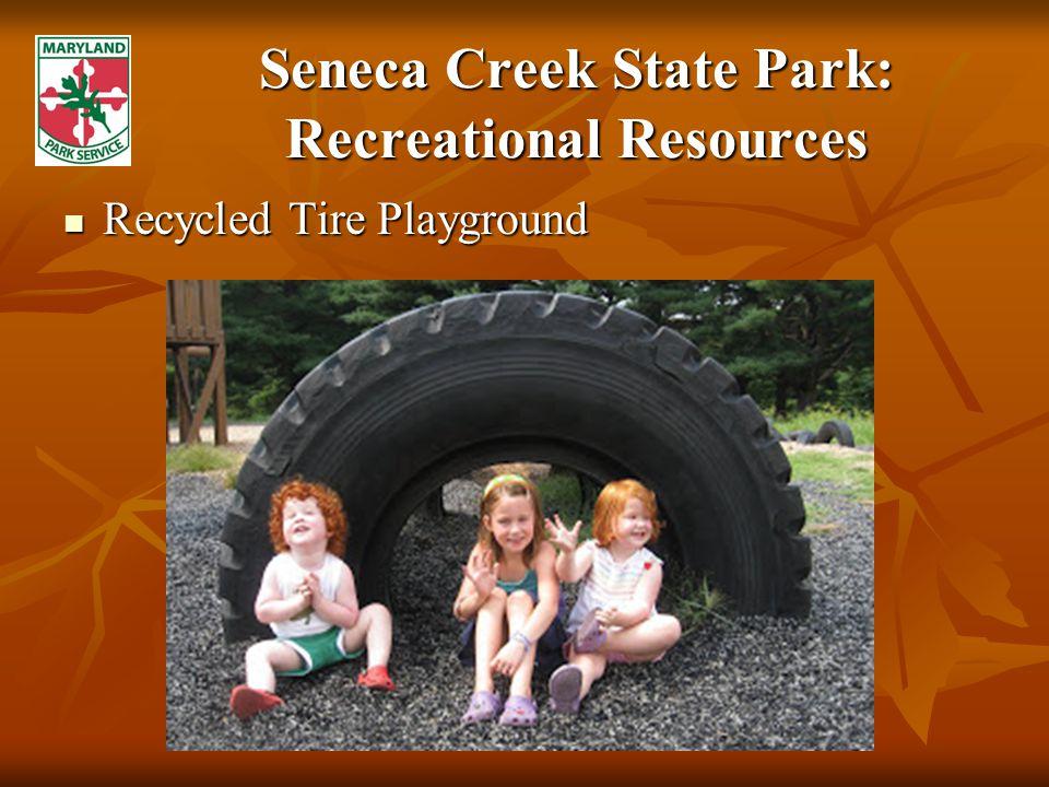 Seneca Creek State Park: Recreational Resources Recycled Tire Playground Recycled Tire Playground
