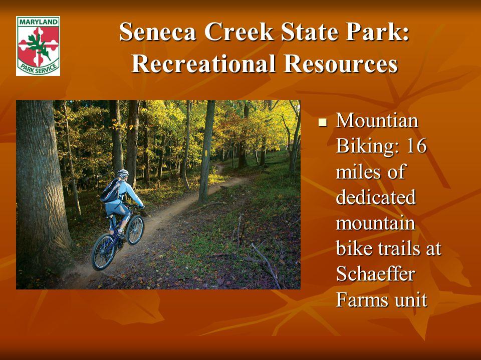 Seneca Creek State Park: Recreational Resources Mountian Biking: 16 miles of dedicated mountain bike trails at Schaeffer Farms unit Mountian Biking: 16 miles of dedicated mountain bike trails at Schaeffer Farms unit