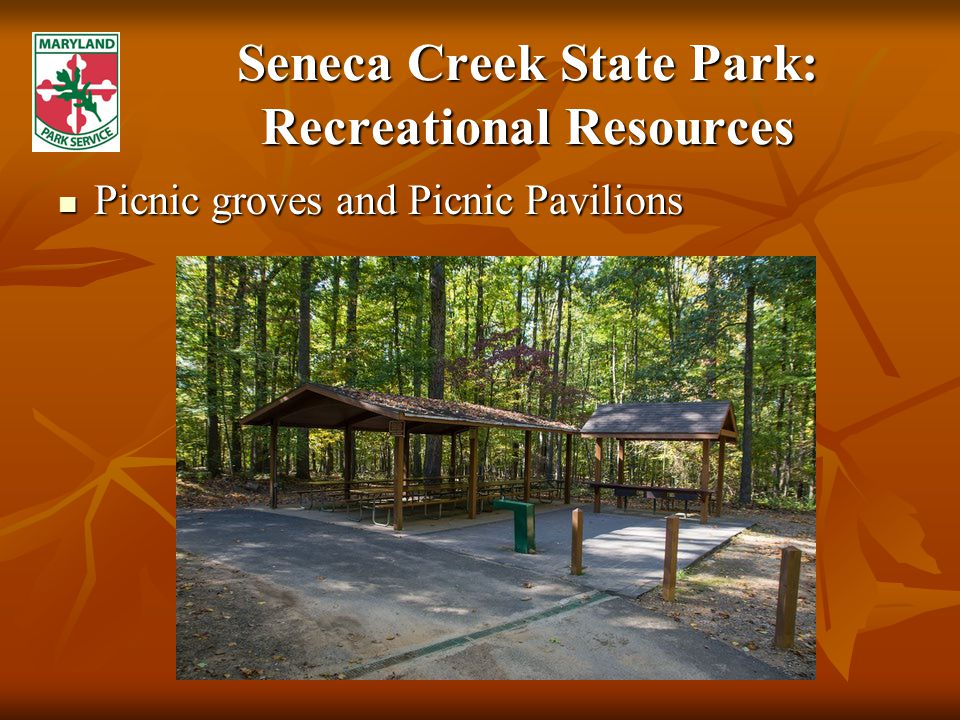 Seneca Creek State Park: Recreational Resources Picnic groves and Picnic Pavilions Picnic groves and Picnic Pavilions