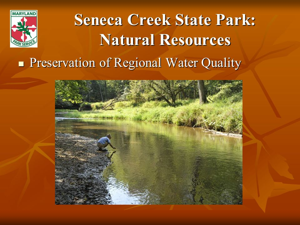 Seneca Creek State Park: Natural Resources Preservation of Regional Water Quality Preservation of Regional Water Quality