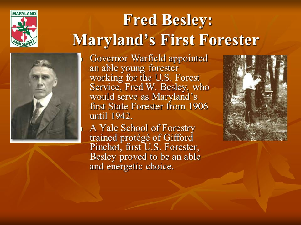 Fred Besley: Maryland's First Forester Fred Besley: Maryland's First Forester Governor Warfield appointed an able young forester working for the U.S.