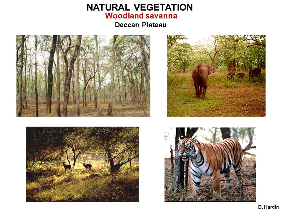 Deccan Plateau D. Hardin NATURAL VEGETATION Woodland savanna