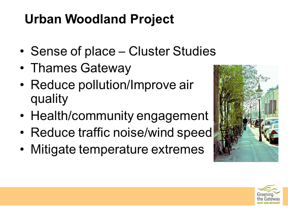 Sense of place – Cluster Studies Thames Gateway Reduce pollution/Improve air quality Health/community engagement Reduce traffic noise/wind speed Mitigate temperature extremes Urban Woodland Project
