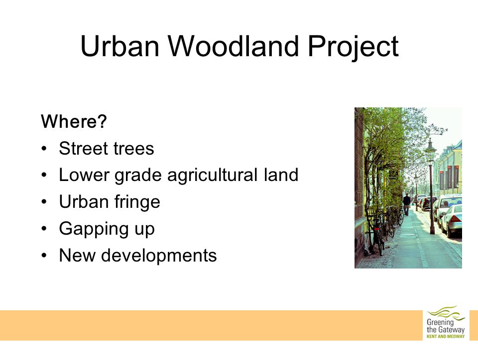 Urban Woodland Project Where.
