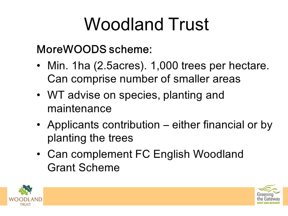 Woodland Trust MoreWOODS scheme: Min. 1ha (2.5acres). 1,000 trees per hectare. Can comprise number of smaller areas WT advise on species, planting and