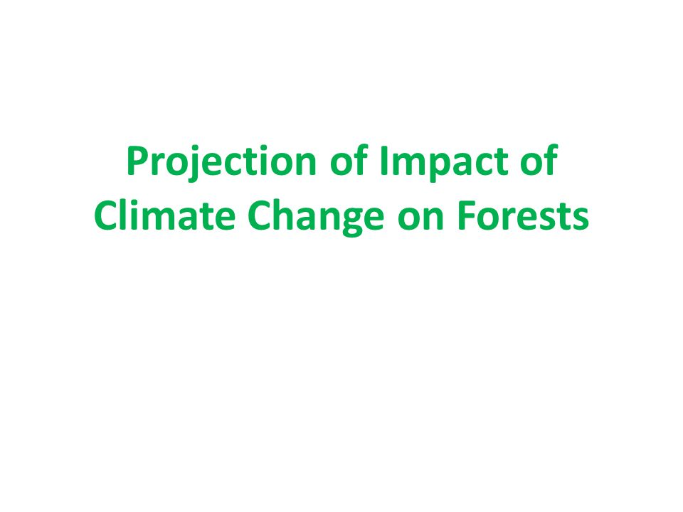 Projection of Impact of Climate Change on Forests