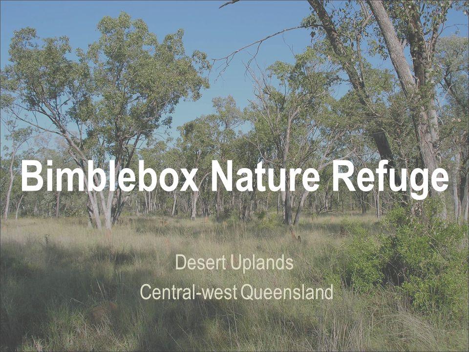Bimblebox Nature Refuge Desert Uplands Central-west Queensland