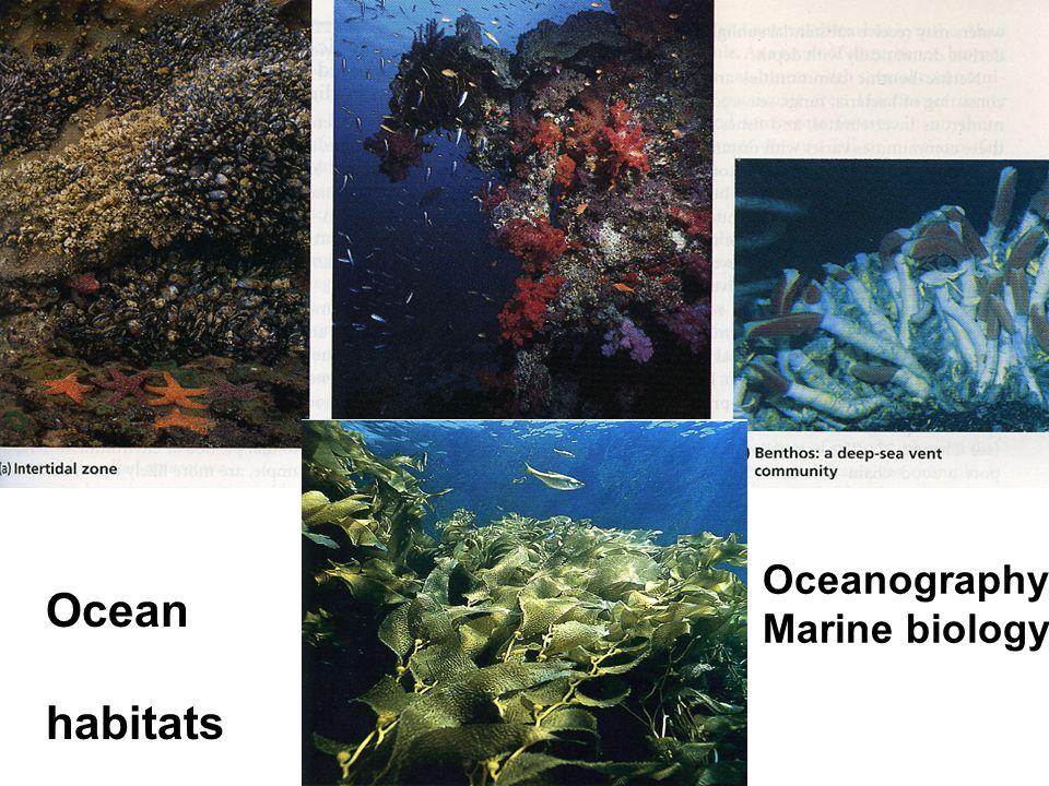 Ocean habitats Oceanography Marine biology