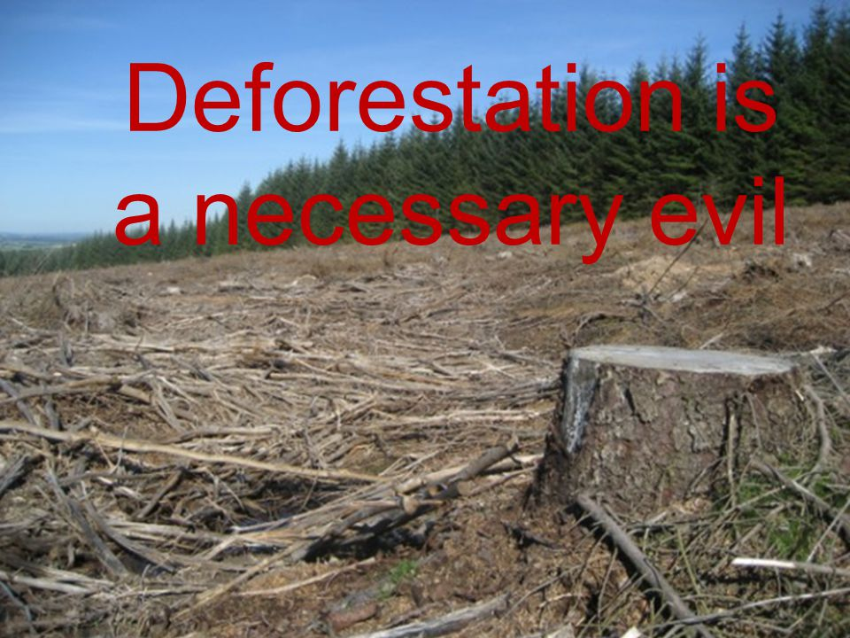 Deforestation is a necessary evil