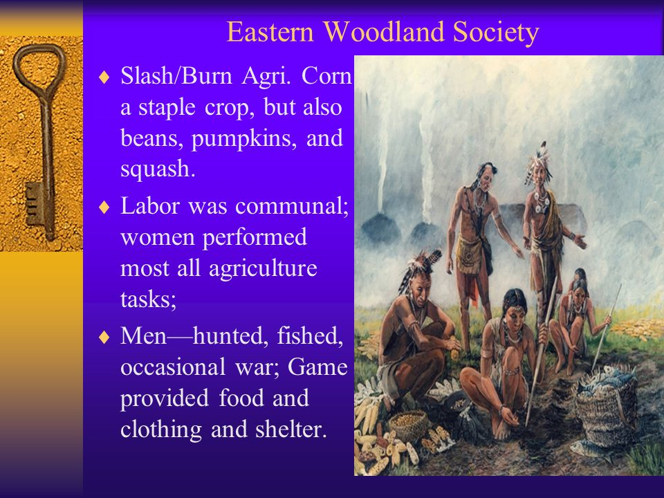 Eastern Woodland Society  Slash/Burn Agri. Corn a staple crop, but also beans, pumpkins, and squash.  Labor was communal; women performed most all a