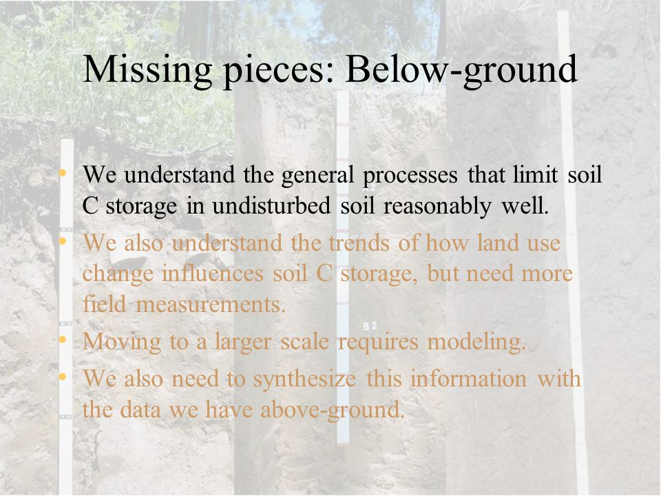 Missing pieces: Below-ground We understand the general processes that limit soil C storage in undisturbed soil reasonably well. We also understand the