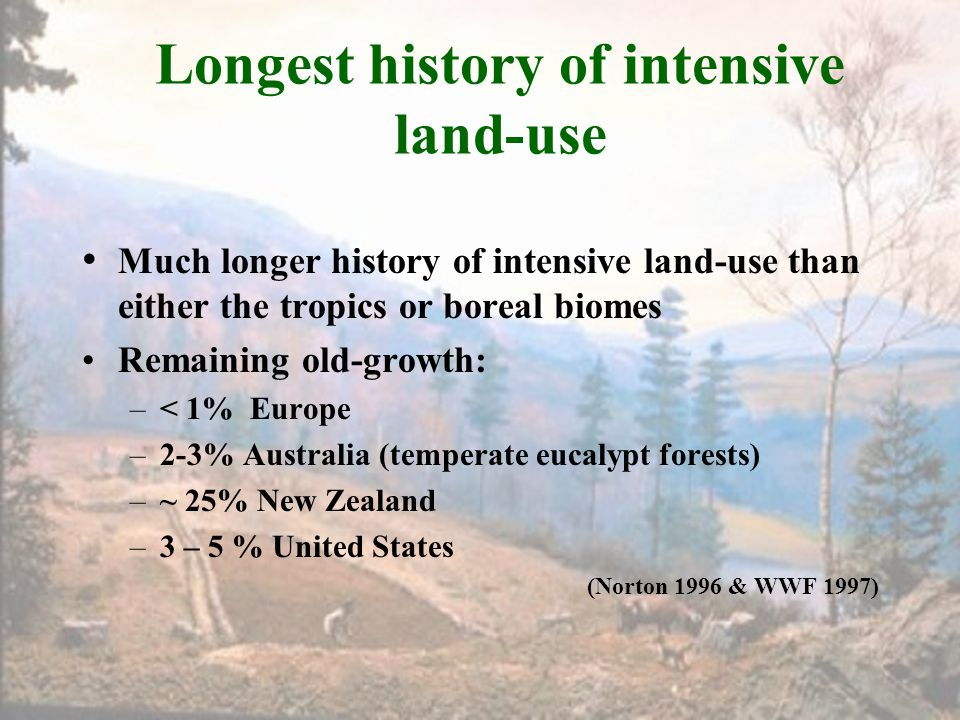 Longest history of intensive land-use Much longer history of intensive land-use than either the tropics or boreal biomes Remaining old-growth: –< 1% E
