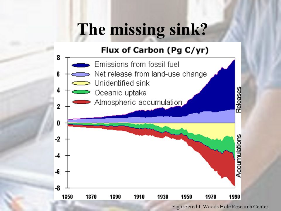 The missing sink? Figure credit: Woods Hole Research Center