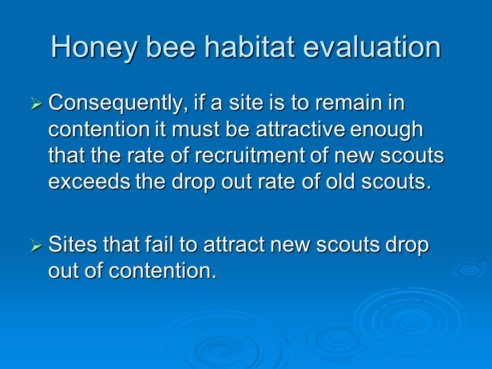 Honey bee habitat evaluation  Consequently, if a site is to remain in contention it must be attractive enough that the rate of recruitment of new scouts exceeds the drop out rate of old scouts.