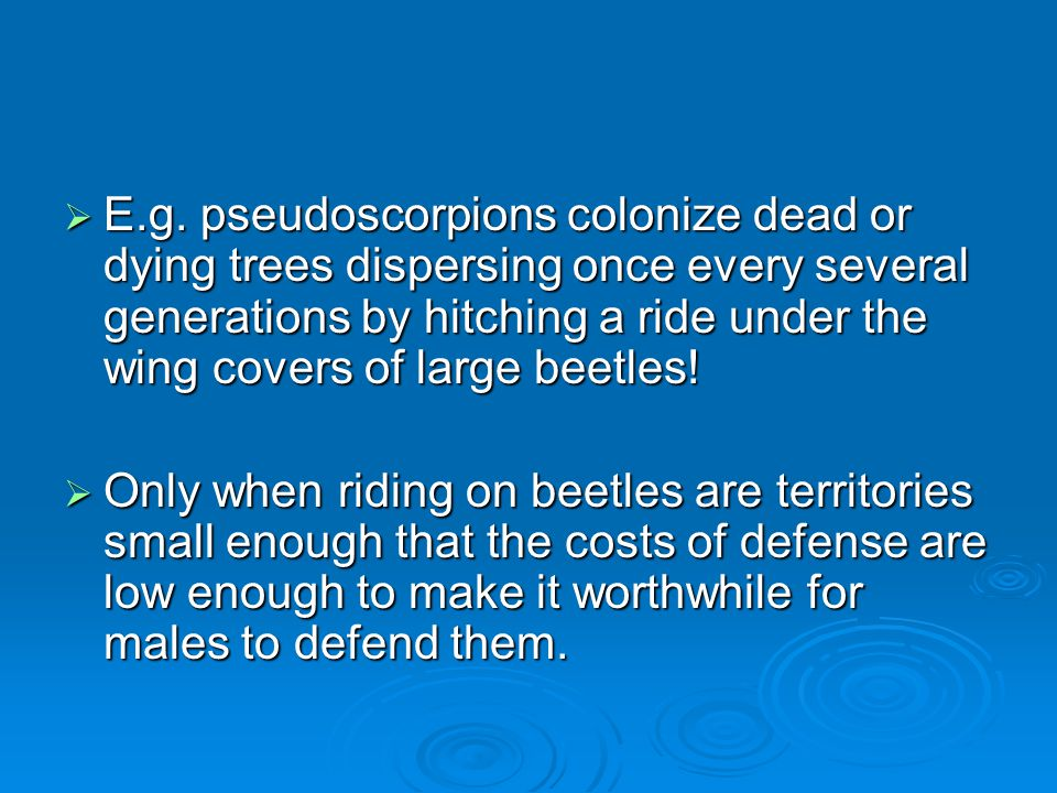  E.g. pseudoscorpions colonize dead or dying trees dispersing once every several generations by hitching a ride under the wing covers of large beetle
