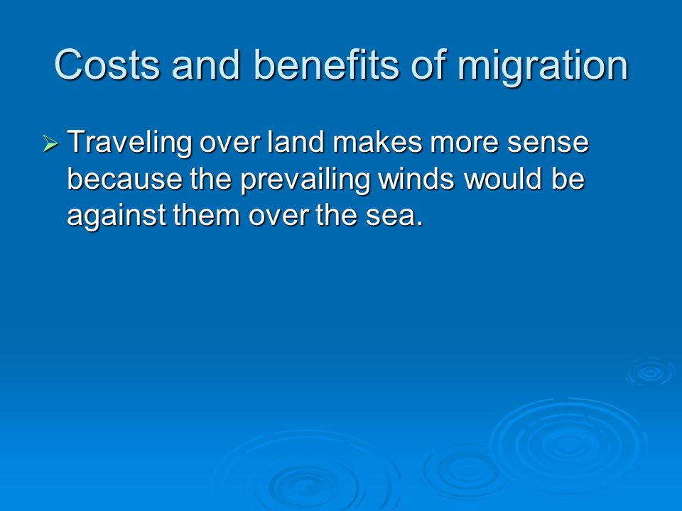 Costs and benefits of migration  Traveling over land makes more sense because the prevailing winds would be against them over the sea.