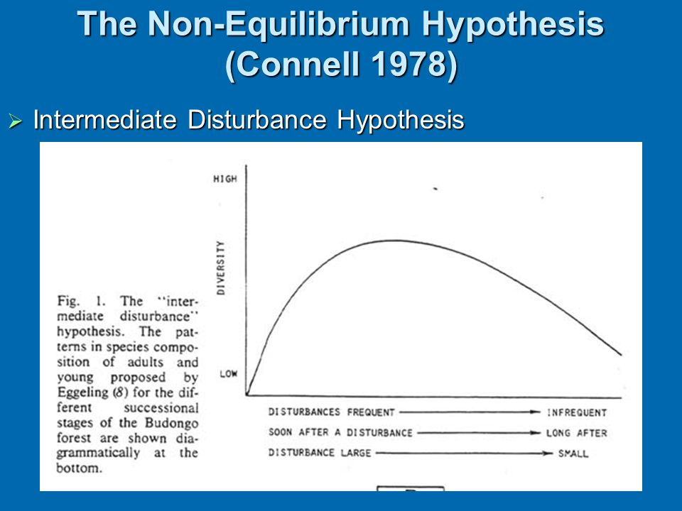 The Non-Equilibrium Hypothesis (Connell 1978)  Intermediate Disturbance Hypothesis