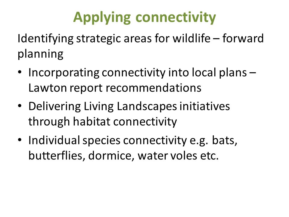 Applying connectivity Identifying strategic areas for wildlife – forward planning Incorporating connectivity into local plans – Lawton report recommen
