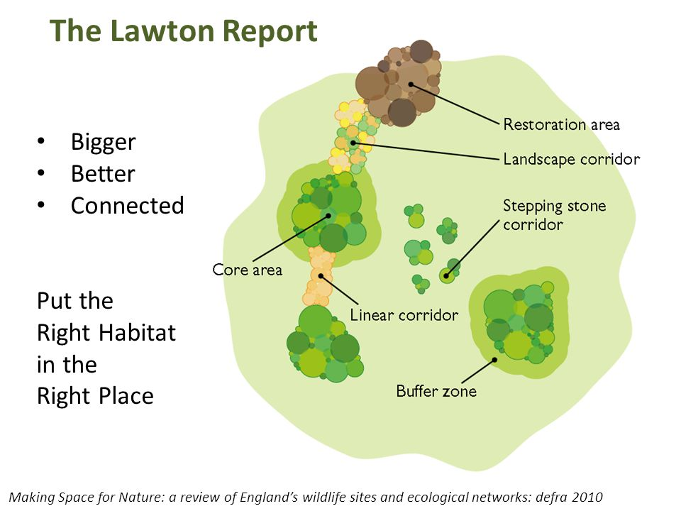 The Lawton Report Bigger Better Connected Put the Right Habitat in the Right Place Making Space for Nature: a review of England's wildlife sites and e
