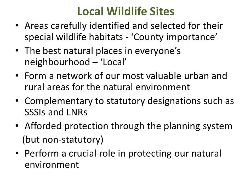 Local Wildlife Sites Areas carefully identified and selected for their special wildlife habitats - 'County importance' The best natural places in ever
